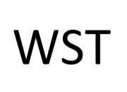 Продукция WST купить оптом в Екатеринбурге с доставкой по всей России